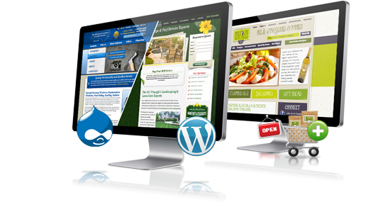 Agence web montr al conception de site web et r f rencement for Idee creation site internet