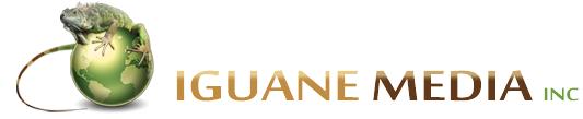 Blog de l'Iguane / faites évoluer votre activité en ligne